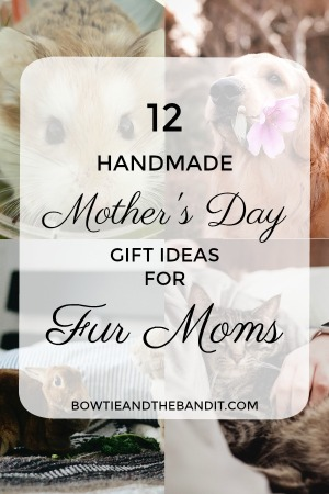 mothers-day-gifts-for-fur-moms